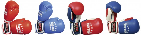 TOP TEN Boxhandschuhe Fight (10 oz)