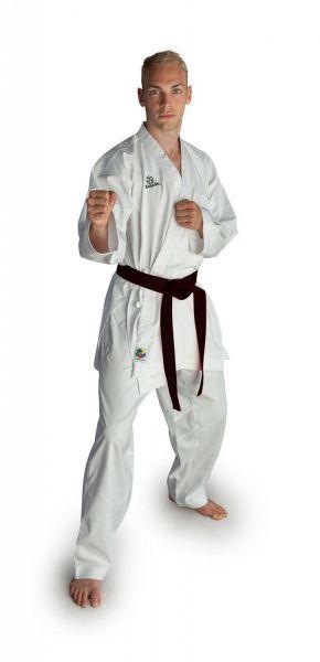 Karategi Kumite Champion Hayashi